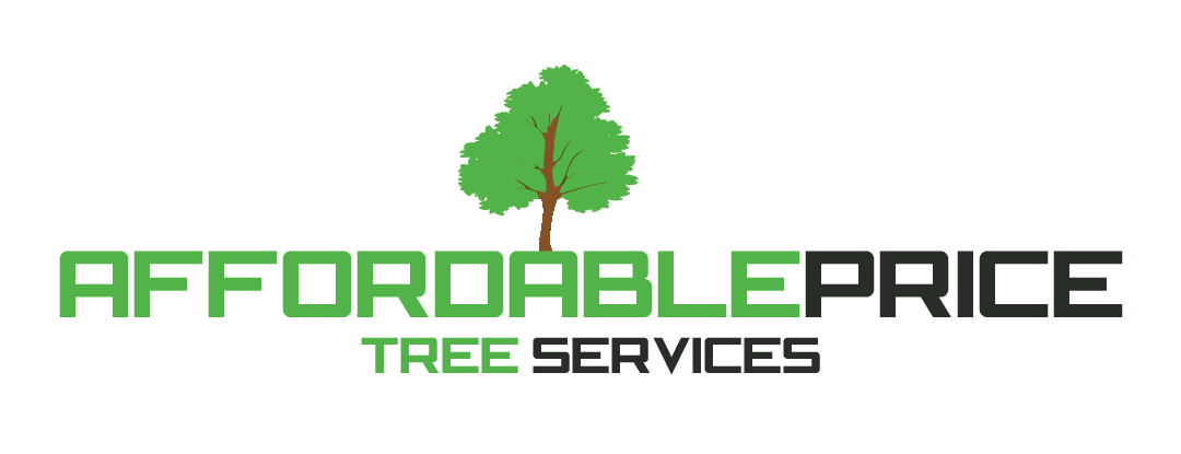 Affordable Price Tree Services